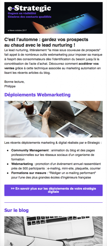 newsletter marketing digital